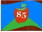 flag85